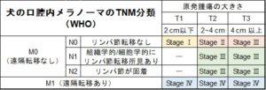メラノーマのTNM分類